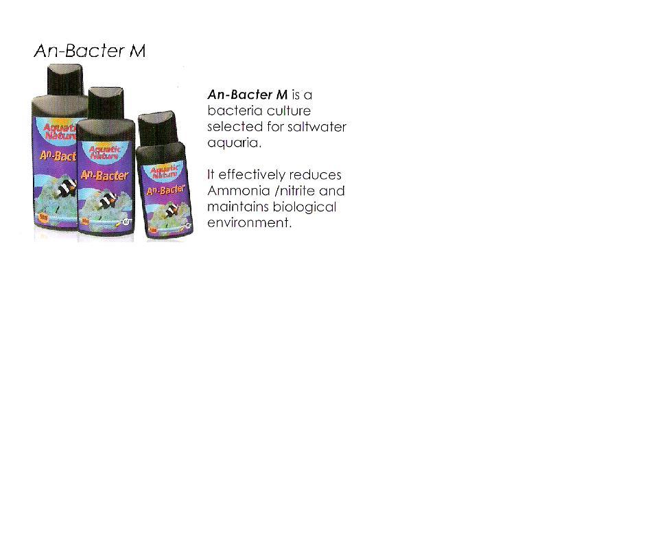 an_bacter