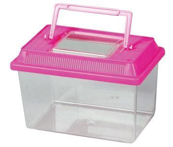 plastic aquarium