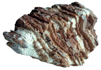 anp_stone shale.jpg