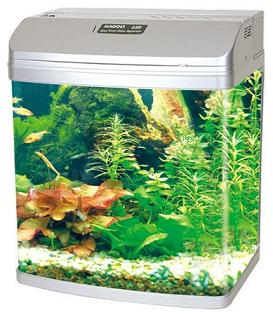Bow Front Glass Aquarium Q-320