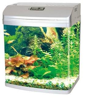 Bow Front Glass Aquarium Q-390