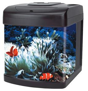 Bow Front Glass Aquarium kit-7 deluxe