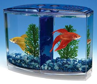 Double tank aquarium