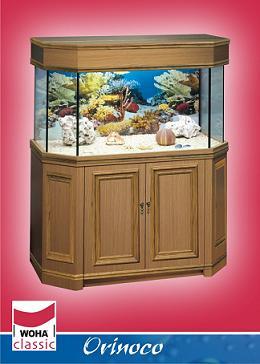 Woha aquariums orinoco