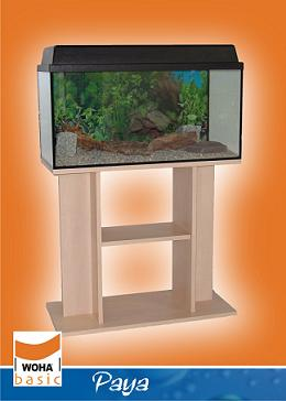 Woha aquariums paya