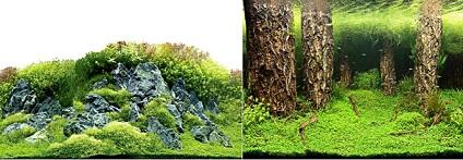 hobby-zuschnitt-scapers-hill-forest-60x30cm-31030