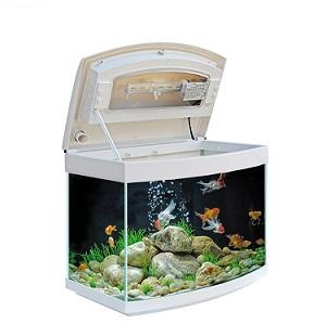 Mtb Milo 45 R Vision Aquarium Tarkus Aqualife