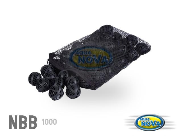 NBB1000